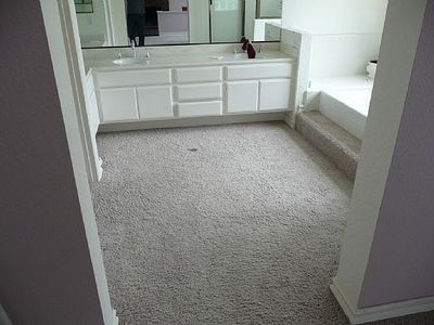 Who Thought Carpet in Bathrooms Was a Good Idea?! | Designs By Katy